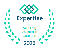 Expertise Best dog walkers 2020